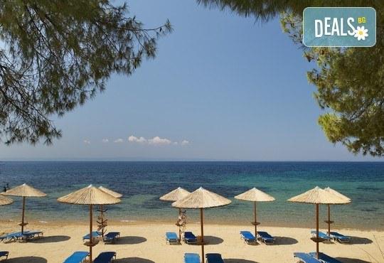 Blue Dolphin Hotel 4* - снимка - 30