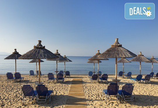 Blue Dolphin Hotel 4* - снимка - 31