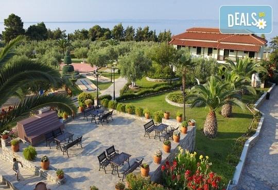Blue Dolphin Hotel 4* - снимка - 4
