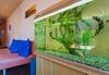 Почивка на супер цена в хотел Джемелли 2*, Обзор! Нощувка с възможност за закуска, обяд и/или вечеря, ползване на сауна и халат - thumb 34