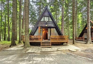 Прохладно лято в Рила планина! Наем на вила Ягода или Малина 3* в Боровец за 1 нощувка до 5 човека - Снимка