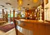 Нова година в хотел Мура 3*, Боровец! 3 нощувки със закуски, 2 стандартни вечери и Новогодишна празнична вечеря с възможност за неограничена консумация на български алкохол, безплатно за дете до 2,99г.! - thumb 4