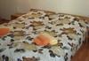 Релакс сред природата в Апартаменти за гости Игъл Рок, Бели Искър, край к.к. Боровец! Две или три нощувки със закуски и вечери в студио за двама или апартамент за четирима!  - thumb 5