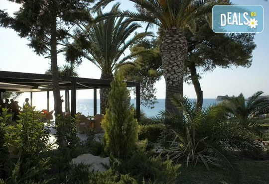 Sani Beach Club & Spa 5* - снимка - 17