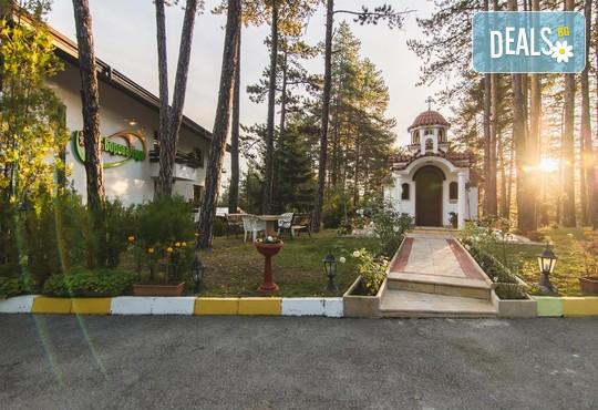 СПА Хотел Борова гора 4* - снимка - 41