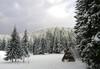Почивка през декември във Вилно селище Малина в Пампорово: 1, 3 или 5 нощувки в самостоятелна вила за двама или четирима, безплатно за дете до 4.99 г. - thumb 20