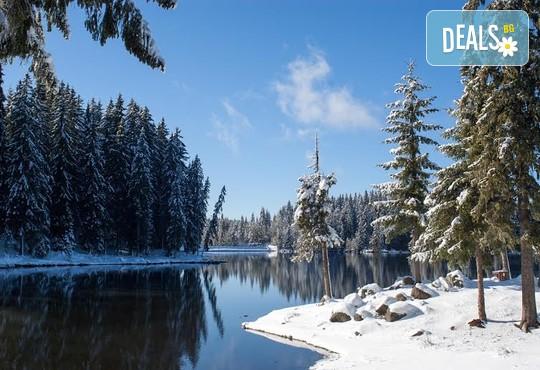 Вилно селище Романтика Форест 2* - снимка - 27
