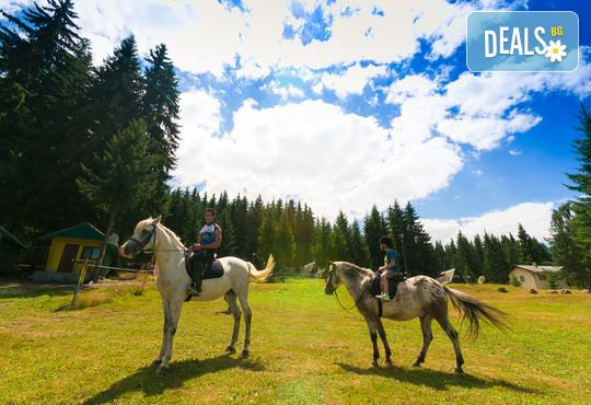 Вилно селище Романтика Форест 2* - снимка - 46