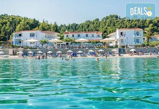 Dolphin Beach Hotel 3* - снимка - 4