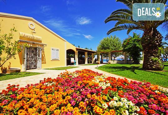 Delfinia Hotel 4* - снимка - 1