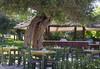 Corfu Chandris Hotel - thumb 4