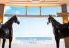 Grecotel Astir Egnatia Luxury Hotel - thumb 27
