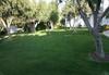 Flegra Palace Hotel - thumb 35