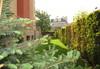 Цяло лято в Апартхотел Фентъзи Апартмънтс, Св.Св. Константин и Елена! 1 нощувка без изхранване в студио или апартамент,с възможност за самостоятелно готвене на храна - thumb 19