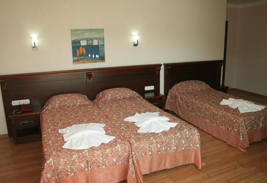 Alkan Hotel 3* - снимка - 5
