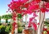 Corfu Palace Hotel - thumb 27