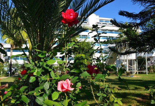 Drita Hotel Resort & Spa 5* - снимка - 18