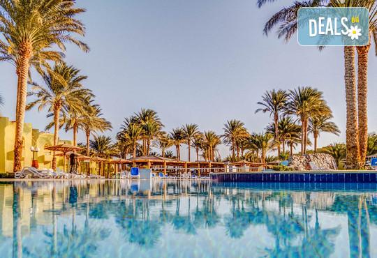 Palm Beach Resort 4* - снимка - 1