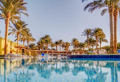 Самолетна почивка в Египет! 7 нощувки на човек на база All inclusive в Palm Beach Resort 4*, Хургада, Червено Море с двупосочен чартърен полет от София - Снимка