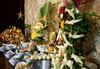 Самолетна почивка в Египет! 7 нощувки на човек на база All inclusive в Jasmine Palace Resort 5*, Хургада, Червено Море с двупосочен чартърен полет от София - thumb 14