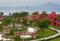 Самолетна почивка в Египет! 6 нощувки на човек на база All inclusive в Charmillion Sea Life Resort 4*, Шарм Ел Шейх, Червено Море с двупосочен чартърен полет от София - Снимка