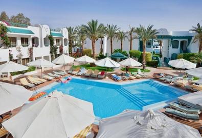 Самолетна почивка в Египет! 7 нощувки на човек на база All inclusive в Falcon Hills Hotel 3*, Шарм Ел Шейх, Червено Море с двупосочен чартърен полет от София - Снимка