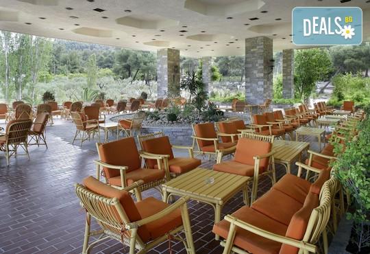 Athos Palace Hotel 4* - снимка - 20