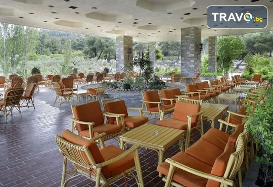 Athos Palace Hotel 4* - снимка - 31