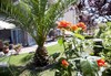 Eleni Apartments 4 Seasons - thumb 7