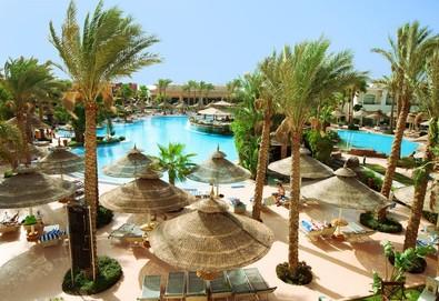 Самолетна почивка в Египет! 7 нощувки на човек на база Ultra all inclusive в Sierra Sharm El Sheikh 5*, Шарм Ел Шейх, Червено Море с двупосочен чартърен полет от София - Снимка