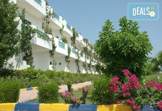 Sharm Cliff Resort 4* - снимка - 3