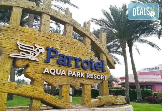 Parrotel Aqua Park Resort 4* - снимка - 6