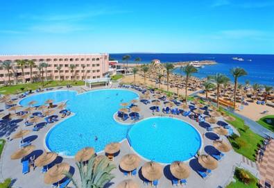 Самолетна почивка в Египет! 7 нощувки на човек на база All inclusive в Beach Albatros Resort 4*, Хургада, Червено Море с двупосочен чартърен полет от София - Снимка