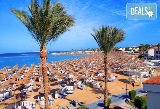 Dana Beach Resort 5* - снимка - 6