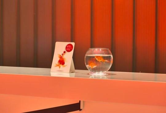 Hotel Su (ex. Sunis Hotel Su) 5* - снимка - 26