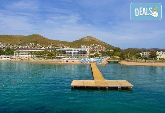 Tiana Beach Resort 3* - снимка - 15