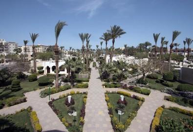 Самолетна почивка в Египет! 7 нощувки на човек на база All inclusive в Regina Swiss Inn Resort 4*, Хургада, Червено Море с двупосочен чартърен полет от София - Снимка