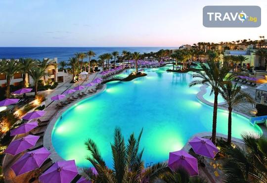 Grand Rotana Resort & Spa 5* - снимка - 1
