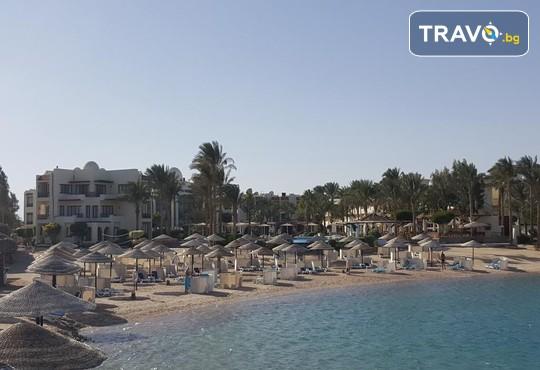 Jaz Casa Del Mar Beach 5* - снимка - 14