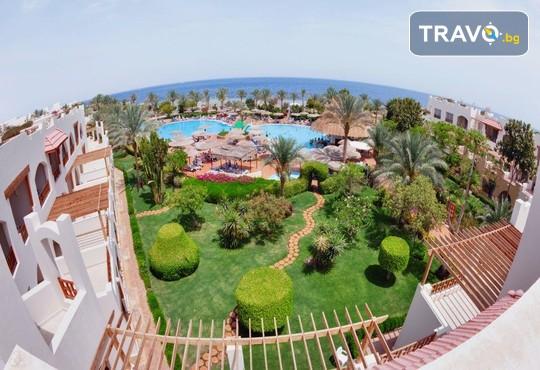 Royal Grand Sharm 5* - снимка - 17