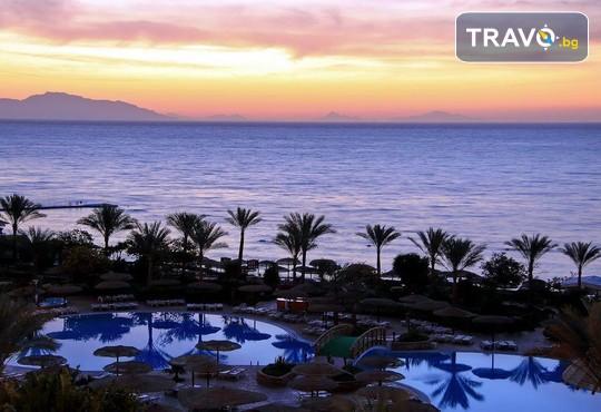 Royal Grand Sharm 5* - снимка - 19