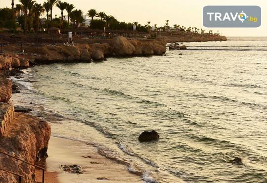 Royal Grand Sharm 5* - снимка - 23